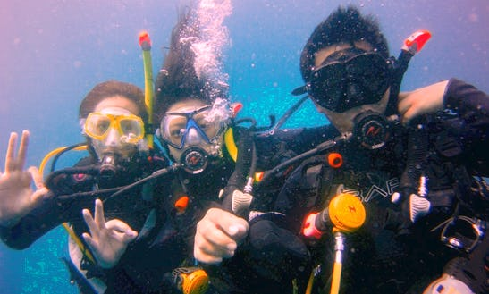 Diving Trips (only For Certified Divers) In Jakarta, Indonesia