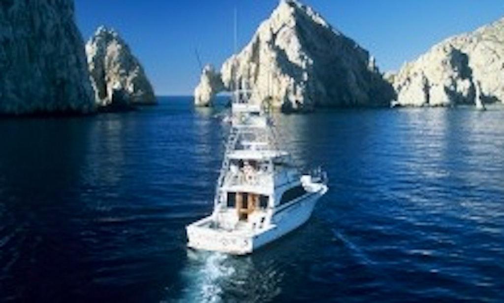 Fishing charter 46 bertram yacht in cabo san lucas for Cabo fishing charters