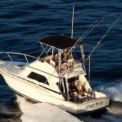 Bertram 37 start me up sport fishing charter in maui for Start me up fishing