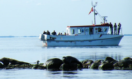 Fishing Charter On 45ft