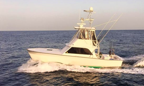 Orange Beach Fishing Charter On 38'ft
