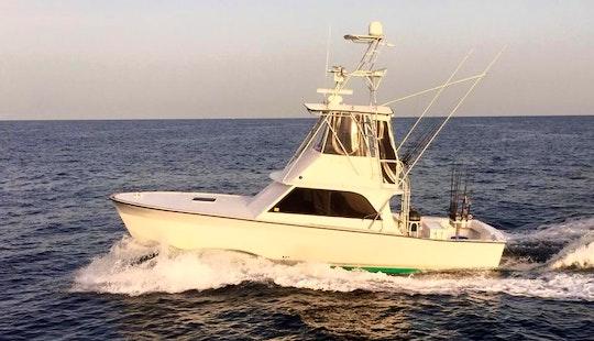 Orange Beach Fishing Charter On 38'ft