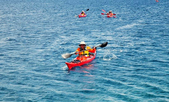 Guided Sea Kayak Adventure And Rental At Thousand Islands, Ontario