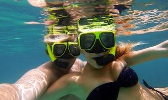 Enjoy Snorkeling Tours in Cruz Bay, St. John