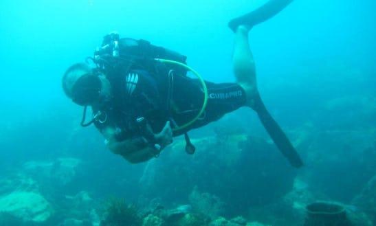 Enjoy Diving Trips & Lessons In Les Trois-Îlets, Martinique