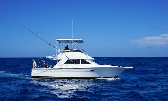 Charter 35ft  Phoenix Yacht In Punta Cana, Dominican Republic