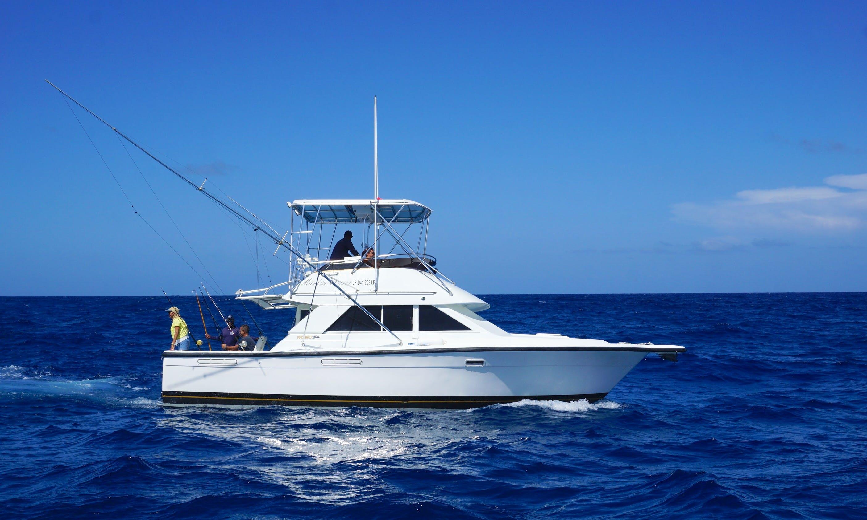Charter 35ft  Phoenix Yacht for deep sea fishing in Punta Cana, Dominican Republic