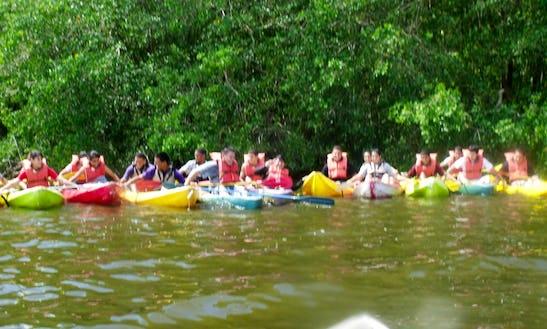 Kayak In Punta Santiago