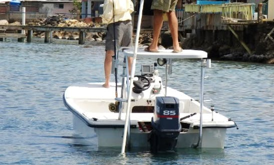 Captained Fishing Charters On 17' Center Console In Cabo Rojo, Puerto Rico