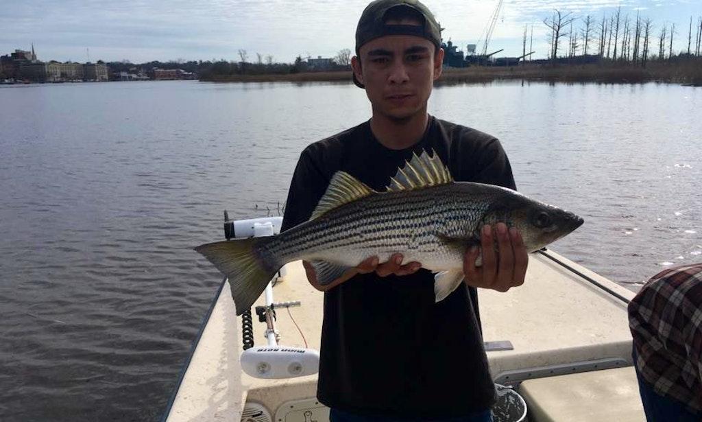 Fishing charter on the corona daze ii boat in wilmington for Wilmington fishing charters