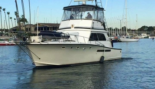 Sport Fisherman Fishing Charter In San Diego, California