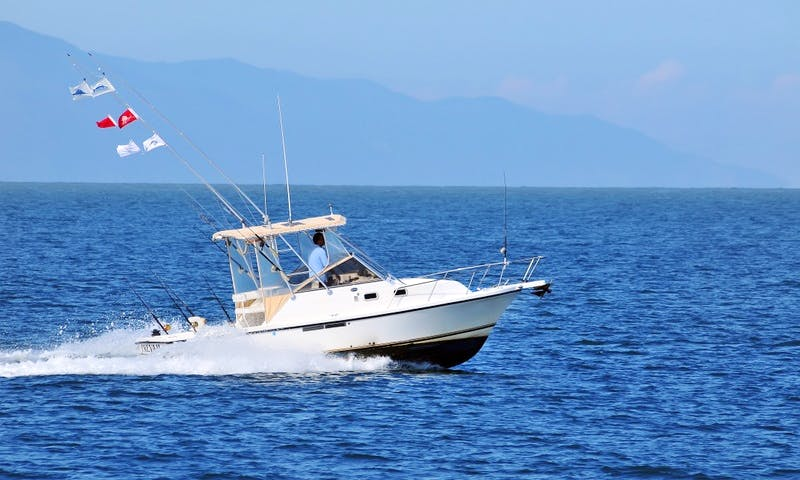 Shamrock 26 fishing charter in Nuevo Vallarta, Mexico