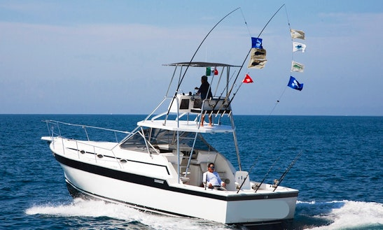 36ft Alura Fishing Charter In Puerto Vallarta