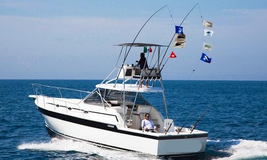 36ft Alura Fishing Charter In Puerto Vallarta