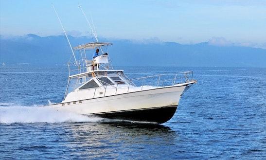 40ft Express Fishing Charter In Puerto Vallarta