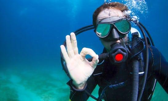 Enjoy Diving Trips And Courses In Koshljun, Croatia