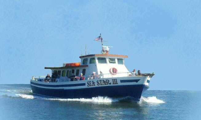 """Fishing Charter On 65ft """"Sea Star III"""" Boat In Cape May, New Jersey"""