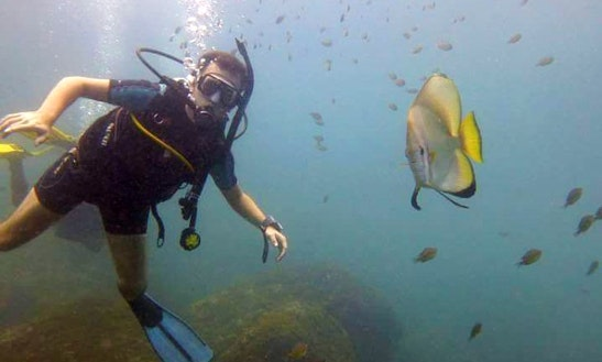 Enjoy Diving Trips In Panjim, Goa