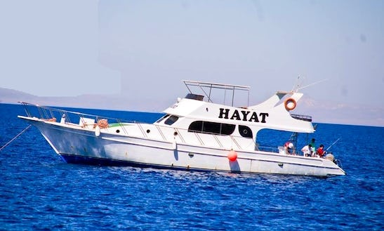 Charter Hayat Motor Yacht In Suez Governorate, Egypt
