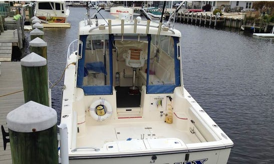 34ft Sportfisherman Boat Charter In Ocean Township, New Jersey