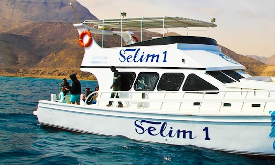 Charter Selim 1 Motor Yacht In Suez Governorate