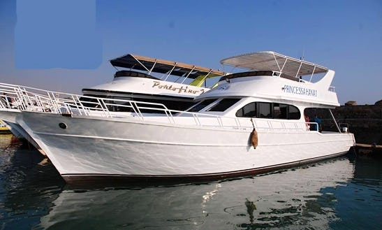 Charter Princess Ahana 1 Motor Yacht In Suez Governorate