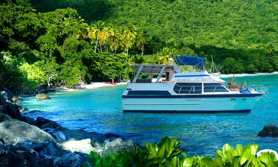 Luxury Yacht Charter In Charlotte Amalie West, U.s. Virgin Islands