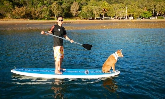 Enjoy Stand Up Paddleboard In Seventeen Seventy,queensland