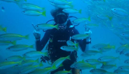 Enjoy Diving Trips & Courses In Tambon Patong,phuket