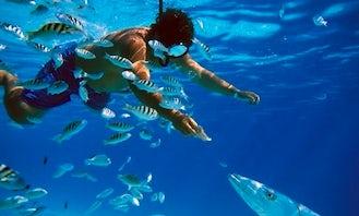 Snorkeling Excursions in Cenotes and Ocean Playa del Carmen, Mexico