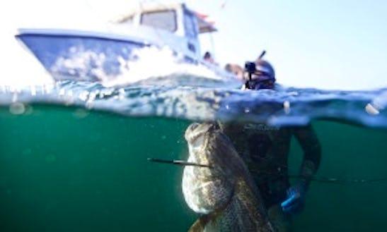 25ft Cuddy Cabin Boat Fishing Charter In Charlestown, Rhode Island
