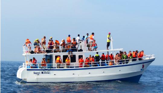 Enjoy Whale Watching Tours In Mirissa, Sri Lanka