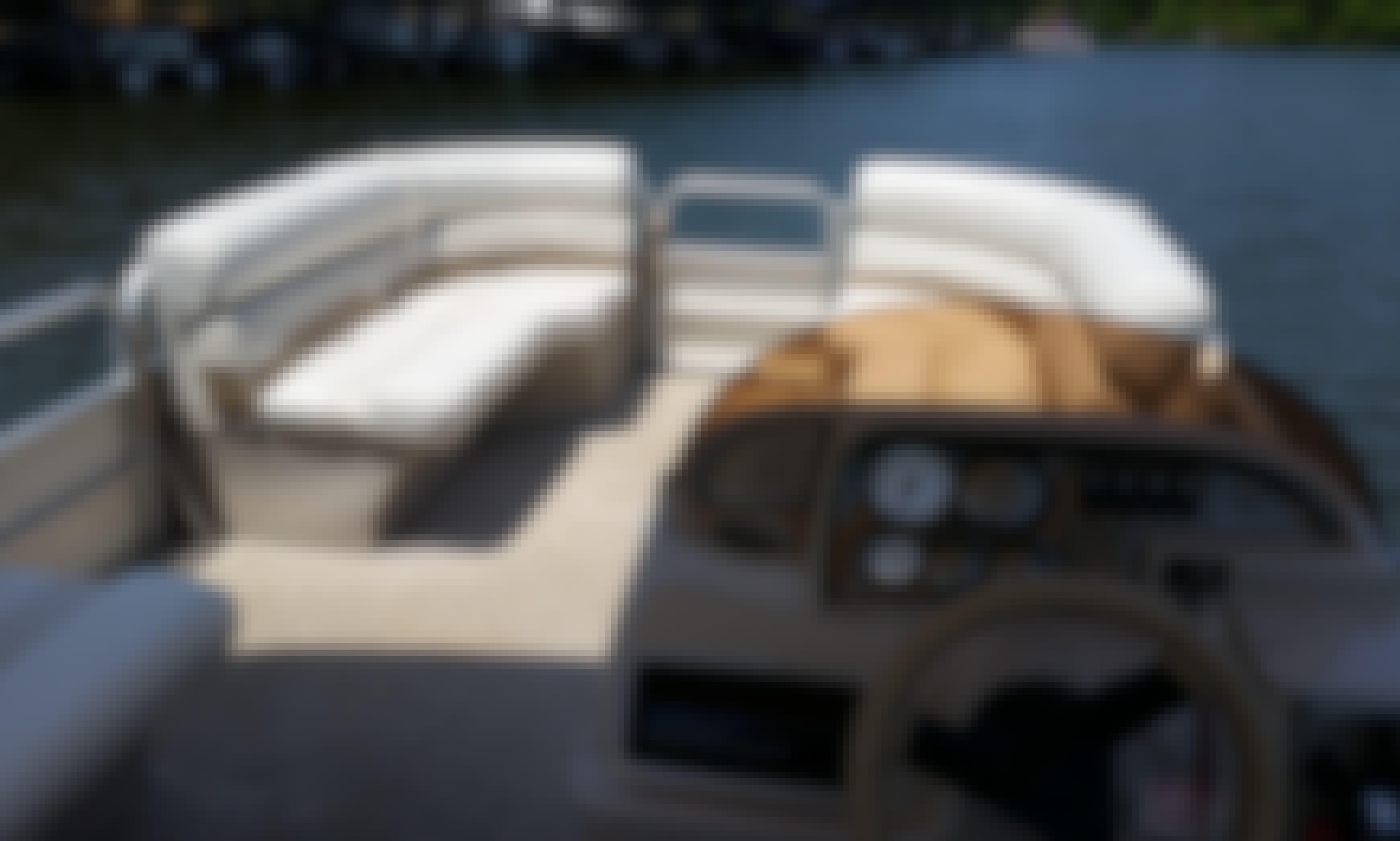 20 ft Pontoon rental on Lake Wedowee