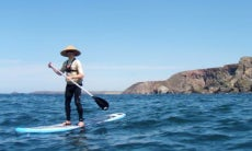 Paddleboard In Saint Agnes, England
