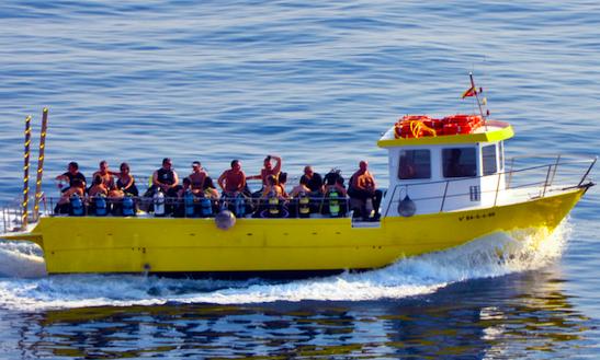Private Snorkeling In L'escala, Spain