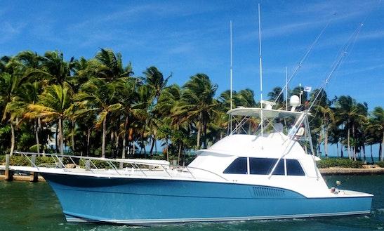 Jupiter Fishing Charter On 53ft Hatteras Yacht With Capt. Matt