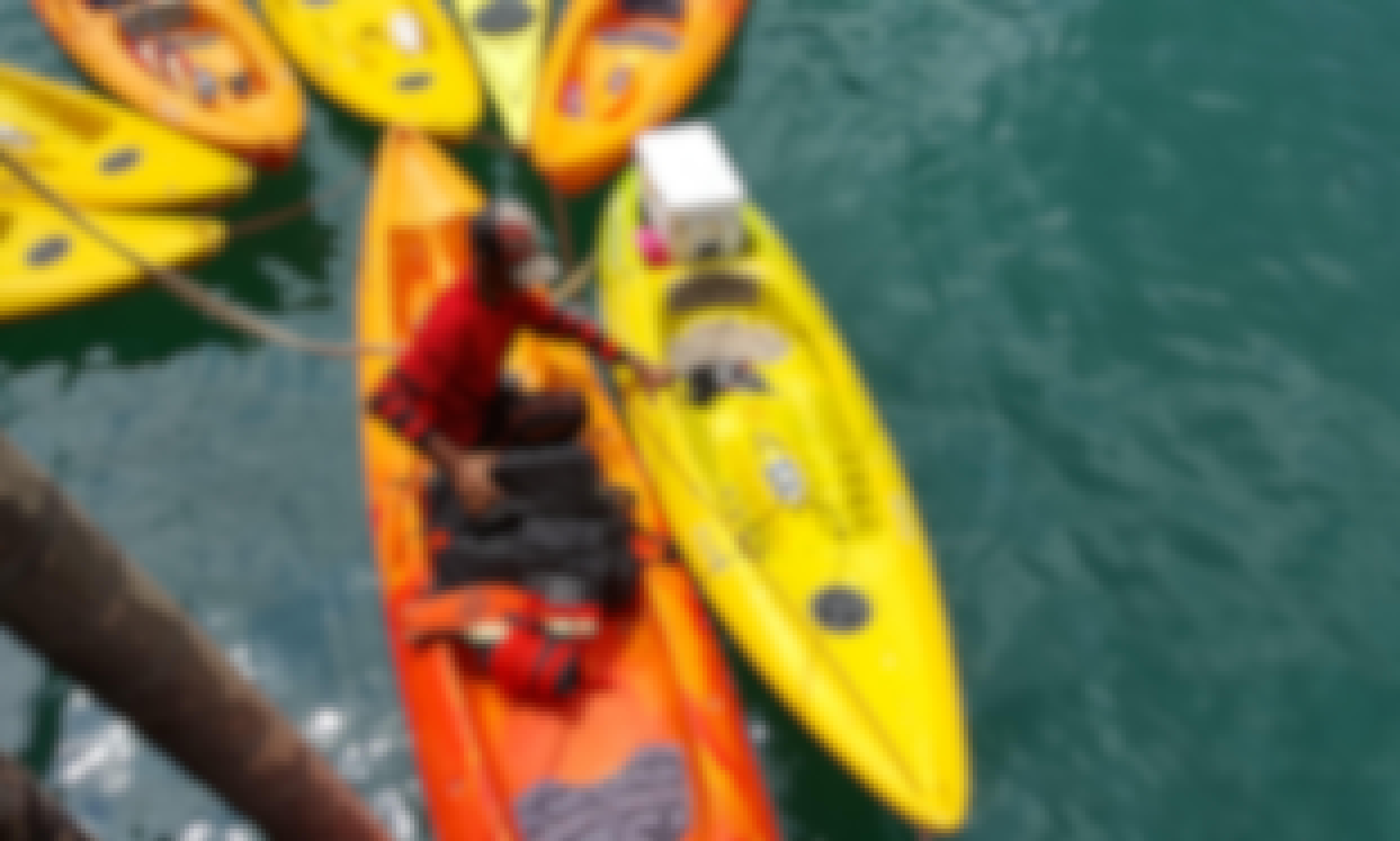 Kayak for rent in Endau