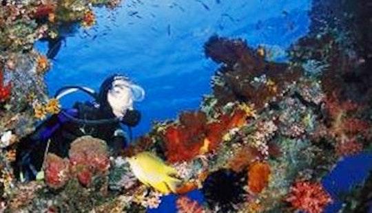 2 Dives At Tulamben Bay/usat Liberty Shipwreck