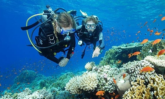 Diving Trips In Safâga
