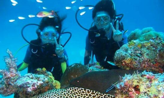 Enjoy Diving Courses In Aluthgama, Sri Lanka