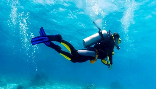 Enjoy Diving Courses In Malvan, Maharashtra