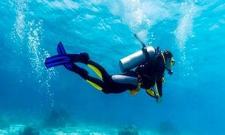 Enjoy Discover Scuba Diving in Malvan, Maharashtra