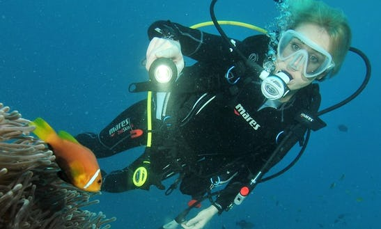 Enjoy Diving Courses In Male, Maldives
