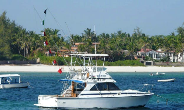 Charter Fishing in Mombasa, Kenya on 35' Sport Fisherman