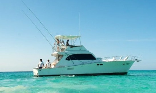 Cancún Fishing Charter On 46' Hatteras Fishing Yacht