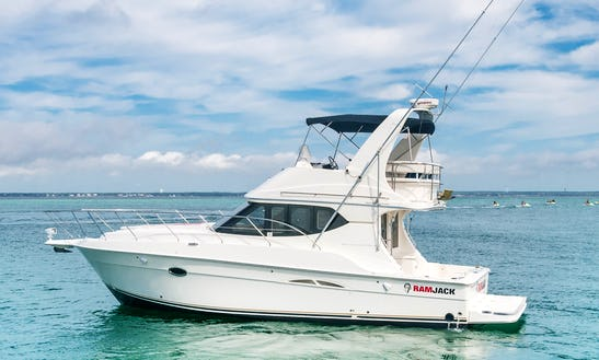 Clean And Professsional - Private Yacht Ramjack, Destin, Fl