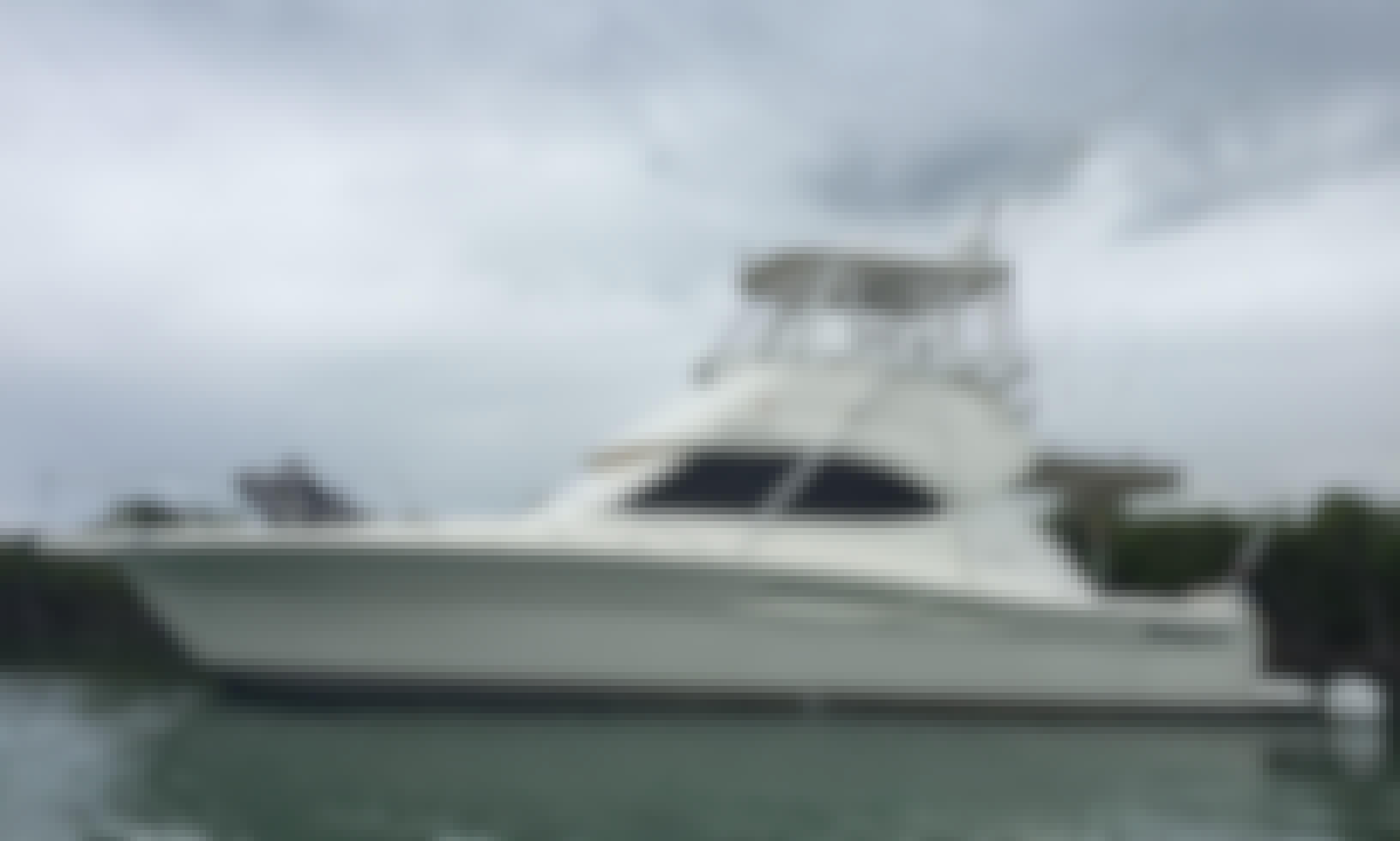 37' Sport Fisherman Charter in Salinas, Puerto Rico