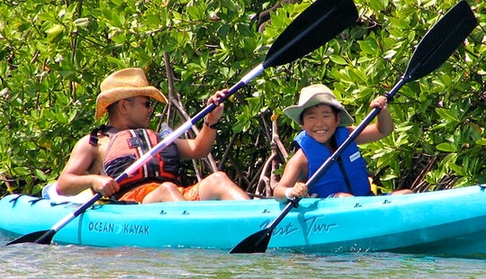 Guided Mangrove Lagoon Cas Cay Kayak Tour In St. Thomas, Us Virgin Islands
