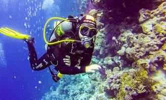Enjoy Diving Courses in Voluntari, Romania