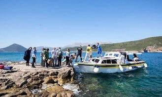 Charter 33' Cuddy Cabin in Herceg - Novi, Montenegro